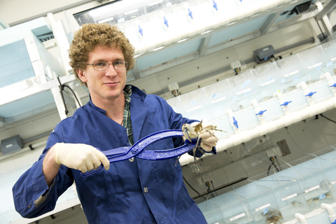 Matt Spitznagel holding a crab in his lab