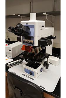 Nikon Eclipse E800 Fluorescent Microscope