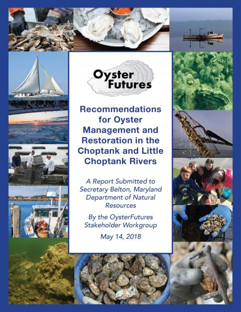 OysterFutures_Recommendations report_cover