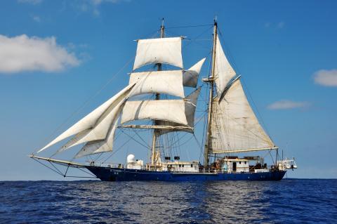 Tall Ship Kaisei