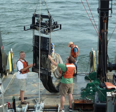 Mike Roman samples for animals in Chesapeake Bay's low oxygen zone.