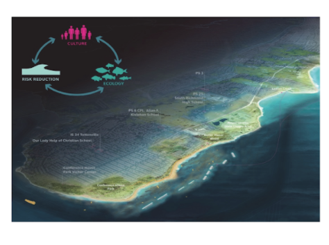 Graphic showing living breakwaters