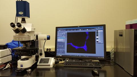 Zeiss Axio Imager 2 Research Microscope