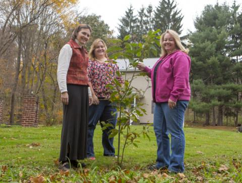 Photo Landowner with Appalachian Lab Scientists for the CRAC Project with chestnut seedling