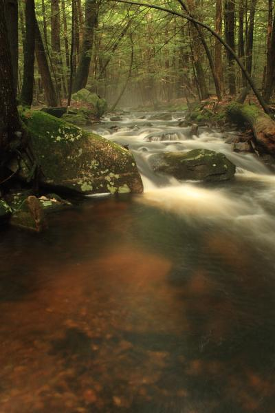 Photo of a Maryland stream