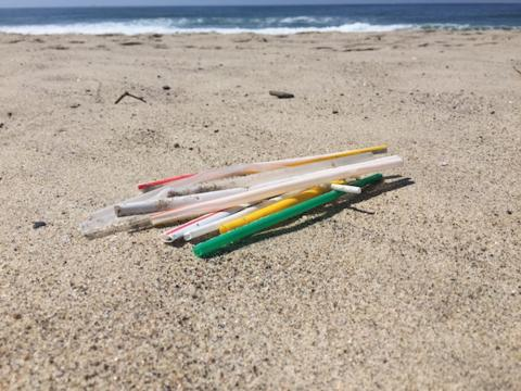 Plastic straws on the beach