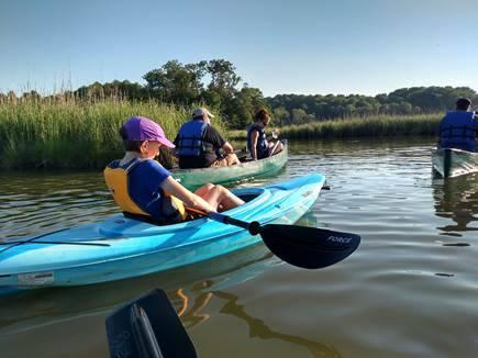 Parkers Creek paddle. Image courtesy of American Chestnut Land Trust.
