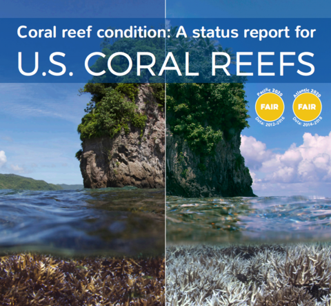 front page of US coral reports
