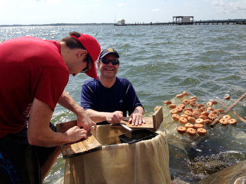 Scientists in the Chesapeake Bay water, taking notes and collecting samples