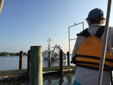 Testa overlooks a pier as a research vessel departs
