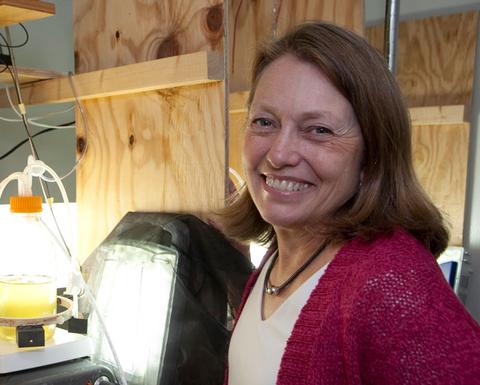 Dr. Pat Glibert