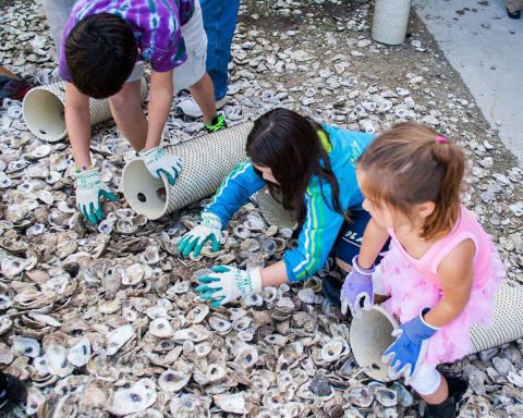 Children learning about oysters at Horn Point Open House