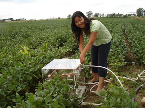 Photo of Xin Zhang working in the field