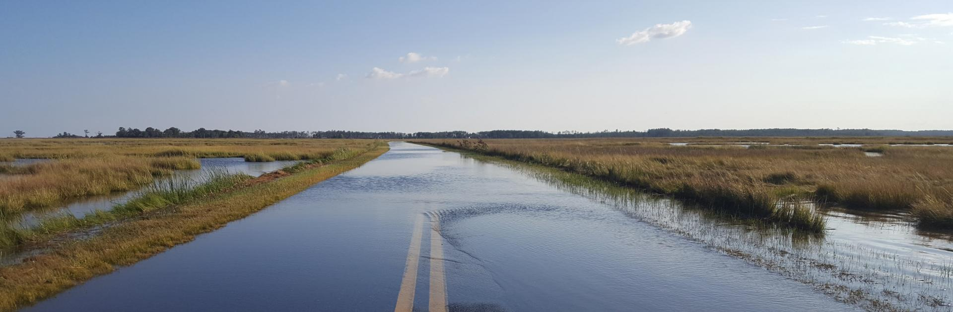 View of flooded road in Blackwater Refuge, Eastern Shore of Maryland