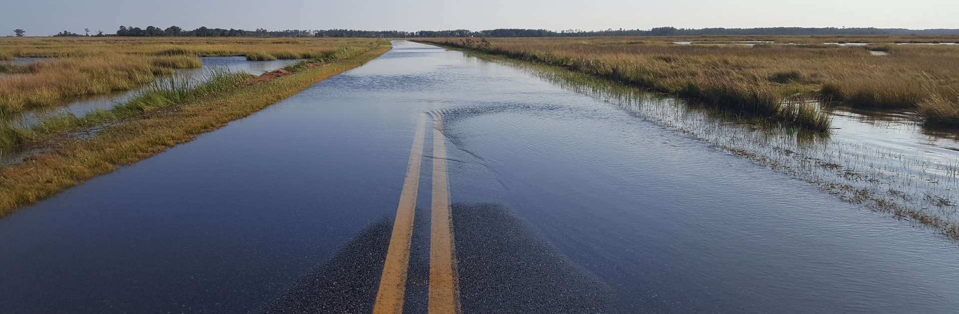 View of road flooding in Blackwater Wildlife Refuge, Dorchester County