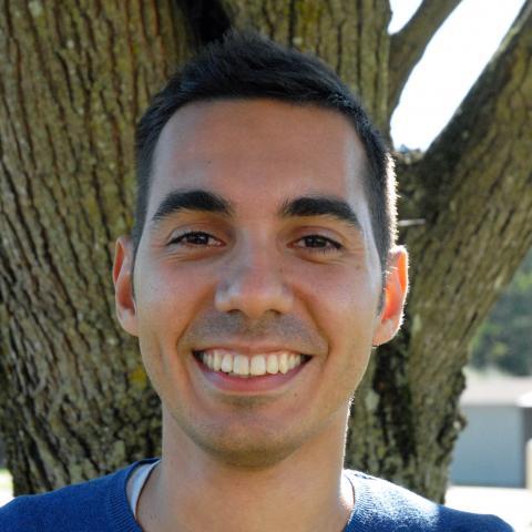 Alessandro Gerevini