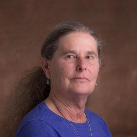Diane Stoecker